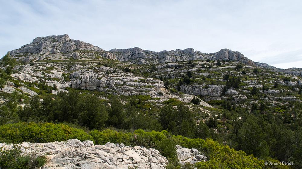 Voyager dans les Calanques de Marseille au Mont Puget
