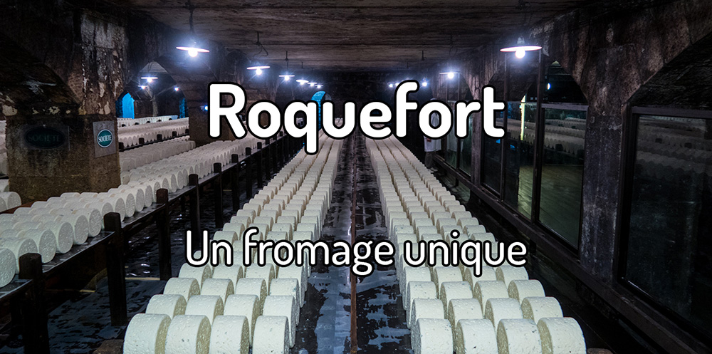 WAT18 – Voyager à Roquefort et goûter le fromage roquefort