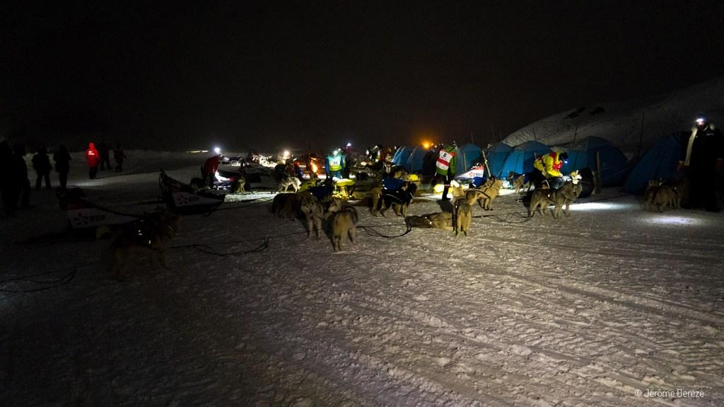 Chiens nordiques et mushers à la base polaire de la Base Polaire de la Grande Odyssée Savoie Mont Blanc
