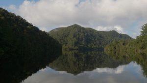 Pieman River