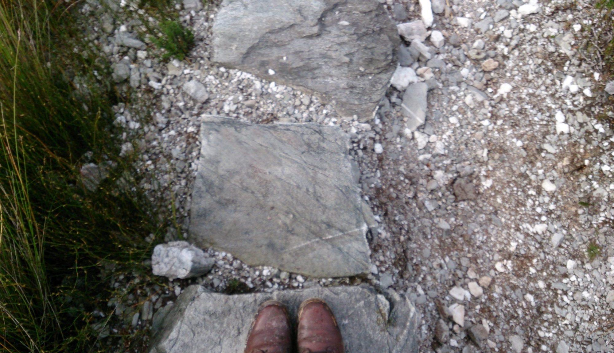 Traversing Mt Donaldson