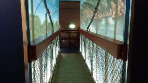 Perception Tunnel