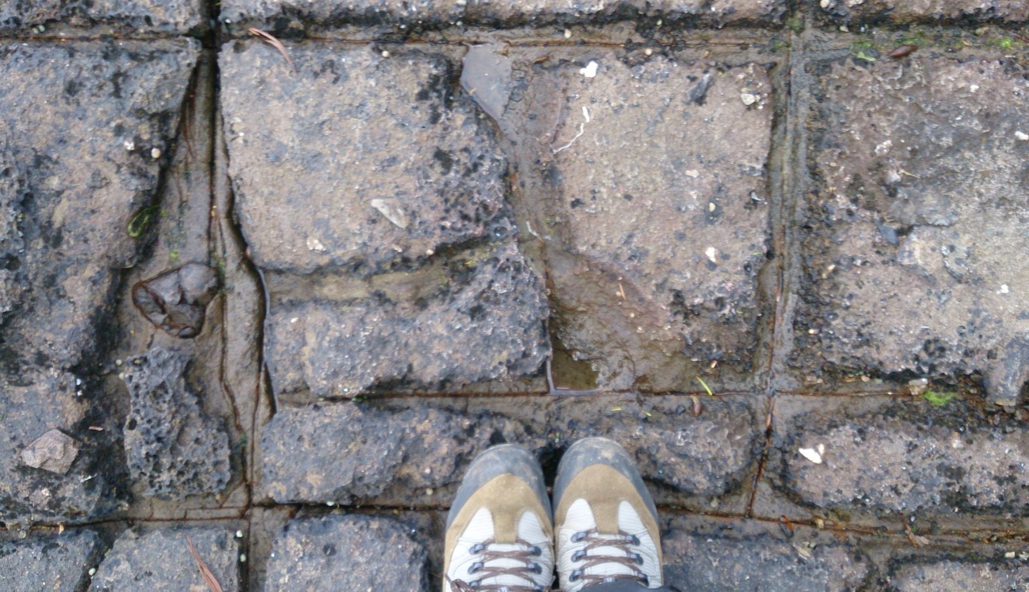 Traversing the Tessellated Pavement