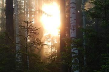 La montaña como terapia: 6 beneficios del outdoor