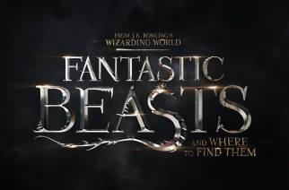"Watch A New Trailer For ""Fantastic Beasts and Where to Find Them"""