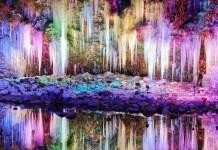 大阪天王寺動物園, 【2019日本旅遊】大阪景點推薦—大阪天王寺動物園