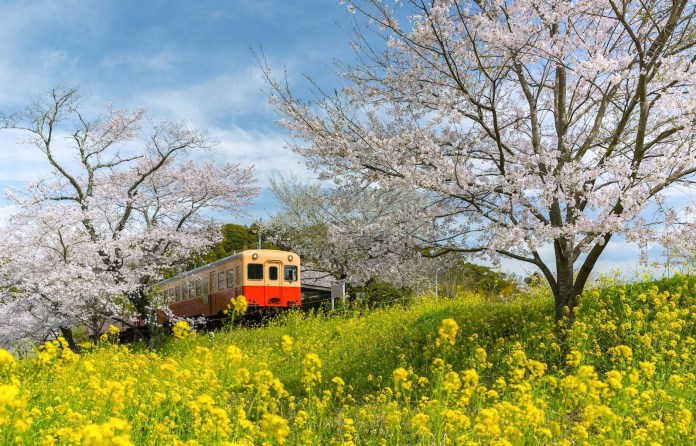 千葉縣火車