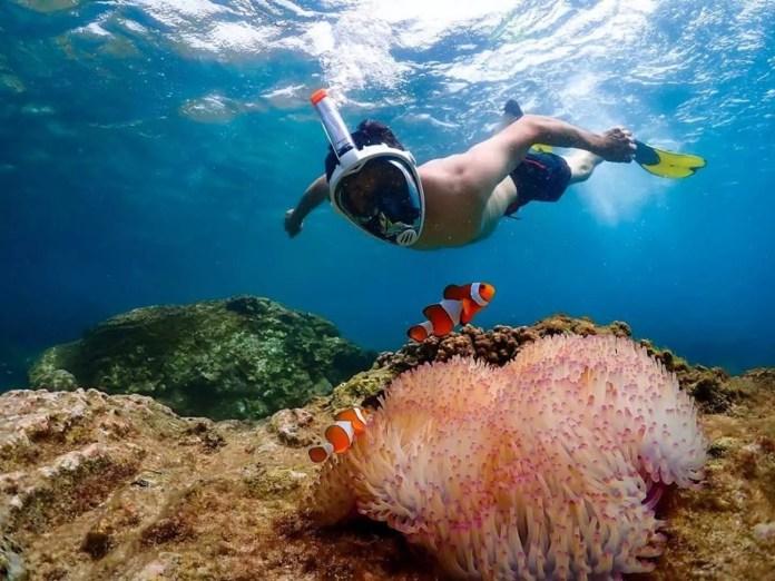 芭達雅潛水