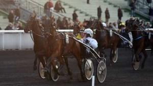 Dante Boko - kan være et godt vinderbud i eftermiddag på Vincennes, Foto Gerard Forni