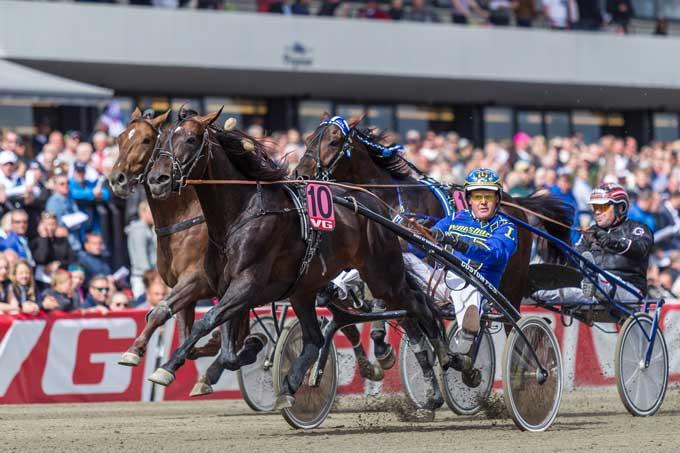 Duke of Greenwood med Hugo Langeweg Jr vandt Europamatchen. Foto Eirik Stenhaug