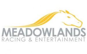 Meadowlandslogo-300x186