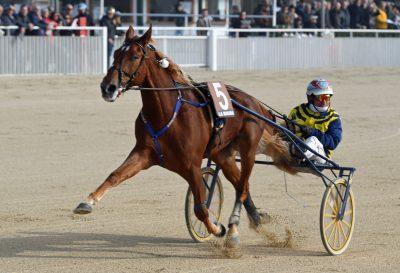 Unicka med Pietro Gubellini. vandt ikke blot Derby, men også bl.a. Orsi Mangelli. Foto Gerard Forni