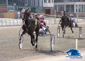 Alex Trøjborg der i fjor  vandt Jydsk 2-årings Grand Prix kan vinde Pay Dirts Mindeløb