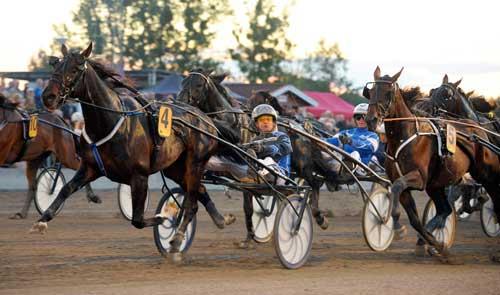 Cash Gamble vinder sikkert for Per Lennartsson. Kanal 75
