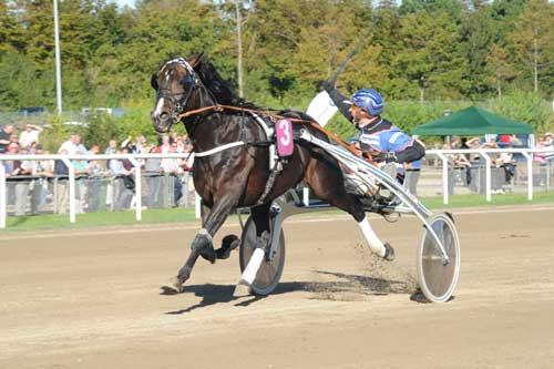 Magiccarpetride med Anders Pedersen på vej mod banerekorden 1.10.9. Foto Ole Hindby