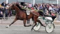 Race Cowboyland kan vinde årets første sejr i eftermiddag