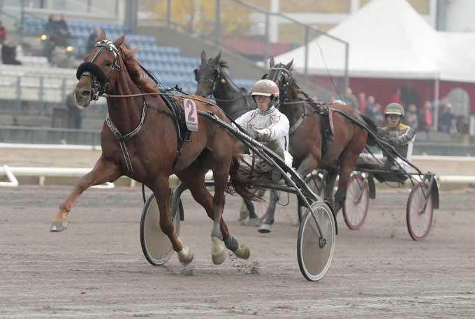Red Rapide med Flemming Jensen sprintede 1.11.5 som sikker vinder Foto Kanal 75.