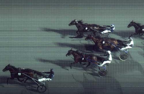 Sejr Gammelsbæk vandt sikkert foran Haras du Pin