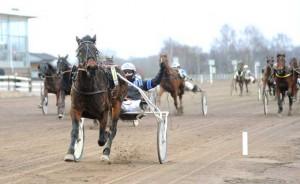 Siti Lock med Thomas Dalborg var dagens store overraskelsen på Kalmar, da den vandt sikkert i 34 gange pengene. Foto Kanal 75