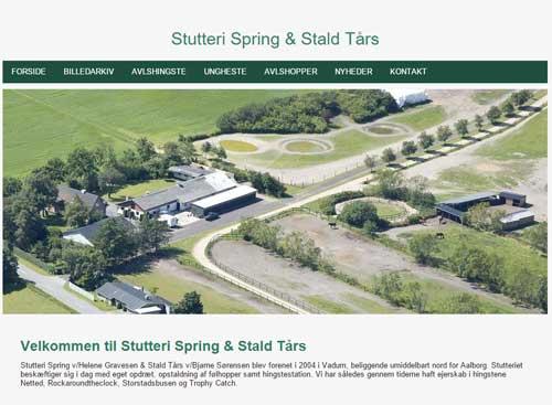 springtaars-hjemmeside