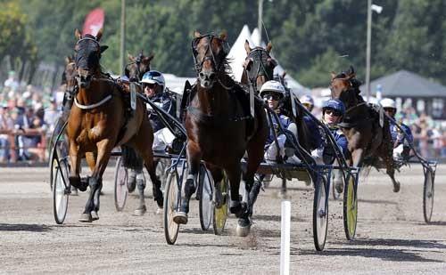 Standout med Erik Adielsson vinder sikkert Gulddivisionen. Foto Kanal 75