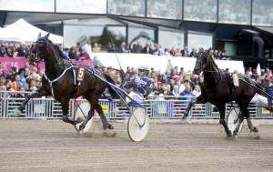 Surre med Christoffer Eriksson vandt 3 års Eliten på Solvalla i 1.11.9a/1609 m  og har siden vundet E3-lang Foto Kanal 75