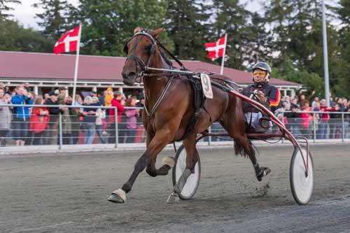 Ingen var i stand til at true What a Babe og Stefan Lind-Holm, der sejrede sikkert. Foto Photopassion.dk
