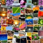 Alle foto's voor een fotoboek