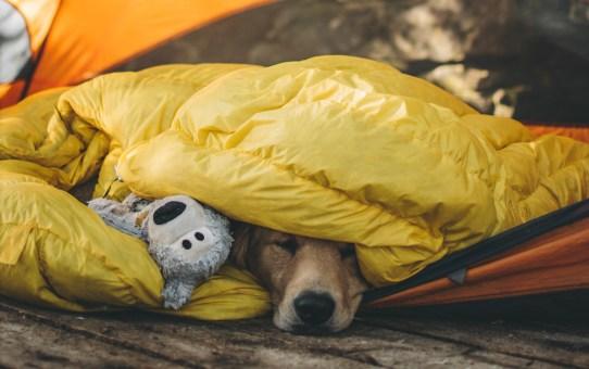 Wat is de R-waarde (R-value) van een slaapmat?