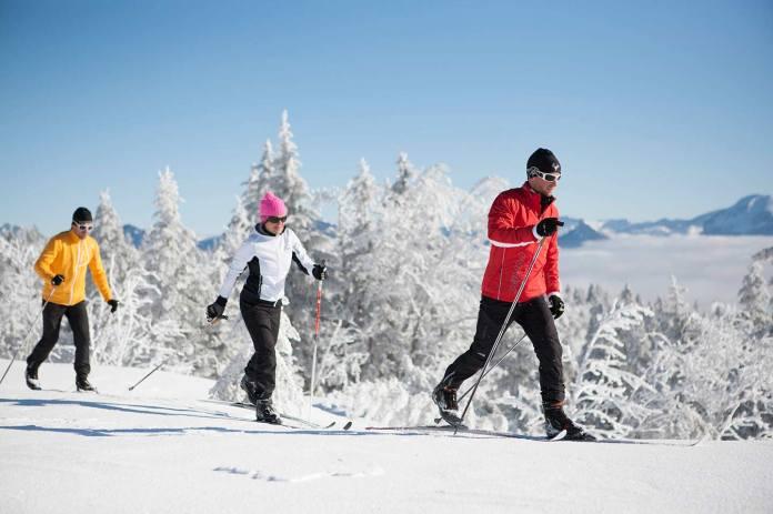 Image result for cross country skiing alaska