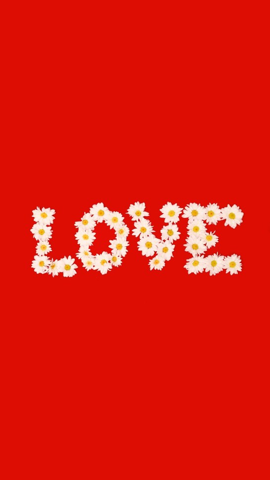 Love Designed With White Flowers Red Background Wallpapers