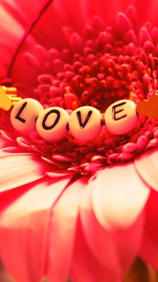 Love Messages Beautiful Flowers Full HD Android Wallpapers