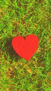 Xiaomi Redmi K30 5G Heart in Grass HD 1080p Wallpapers
