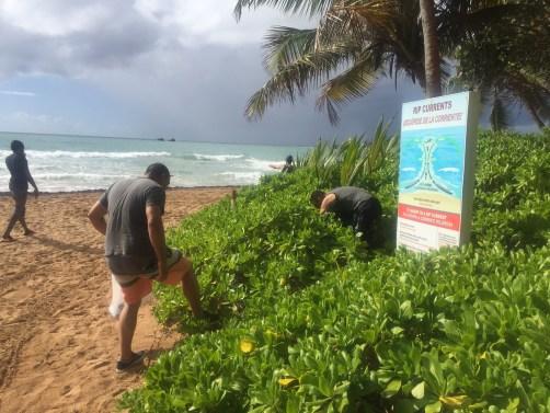 Limpieza de playa 3