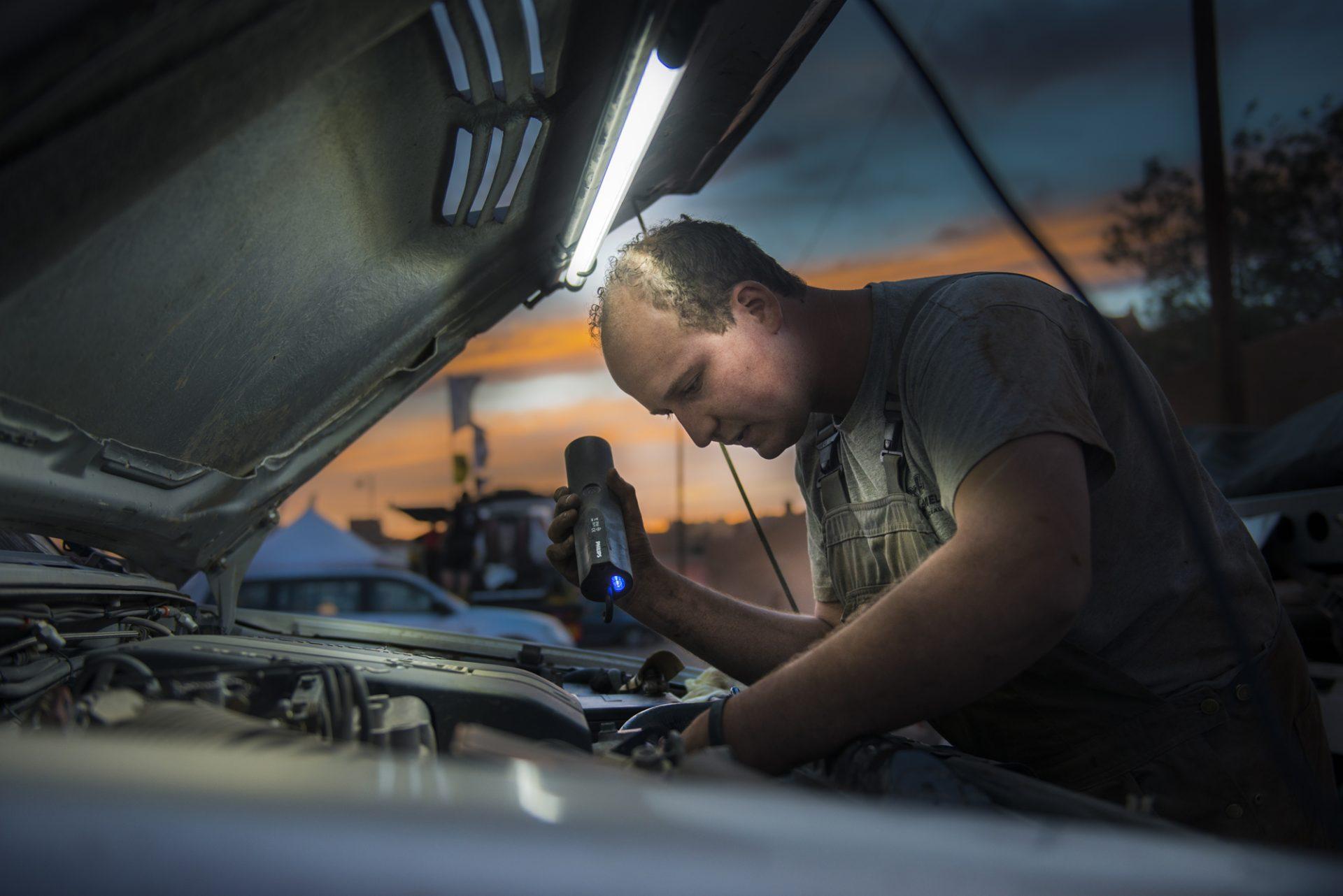 Autowissen: Marder-Bisse in Kabel und Schläuche bleiben oft unentdeckt