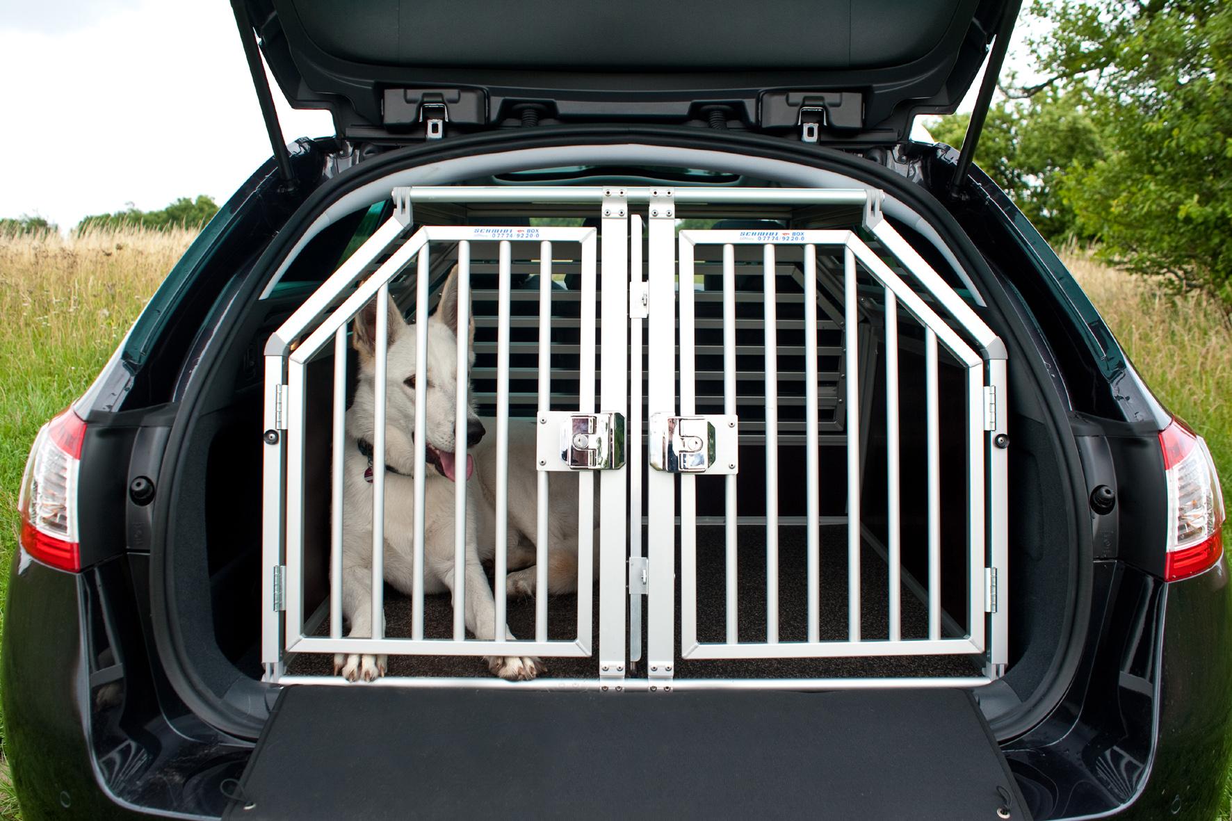 Haustiere an Bord: Im Sommer droht dem Hund der Hitzetod