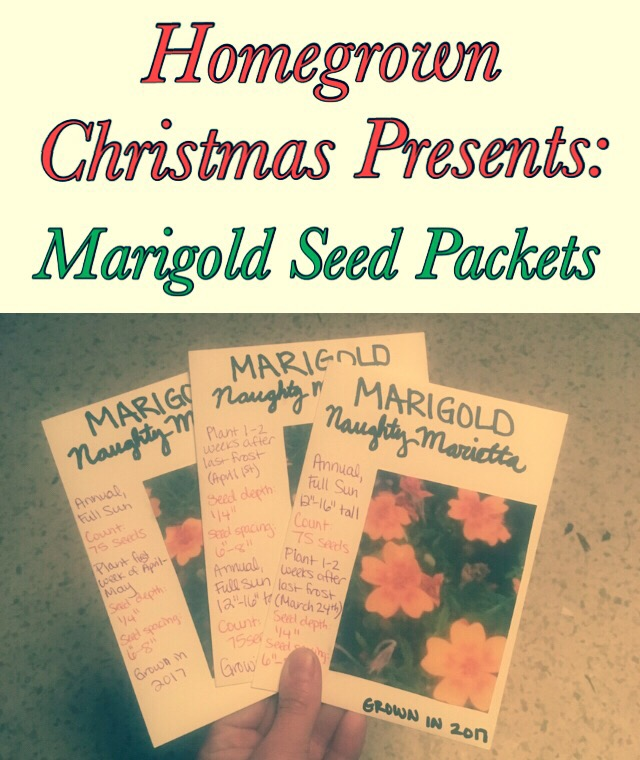 Homegrown Christmas Presents Flower Seed Packets Tread Lightly