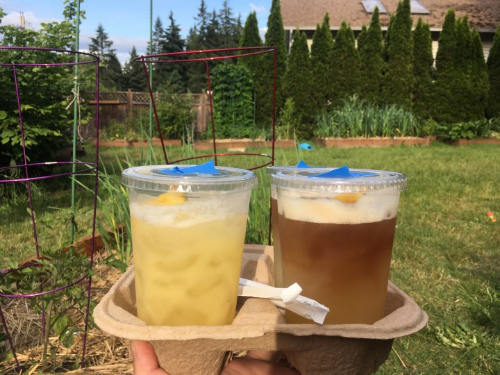 Mixed drinks held up in front of the garden