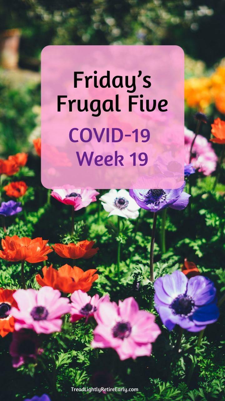 Week 19 pin