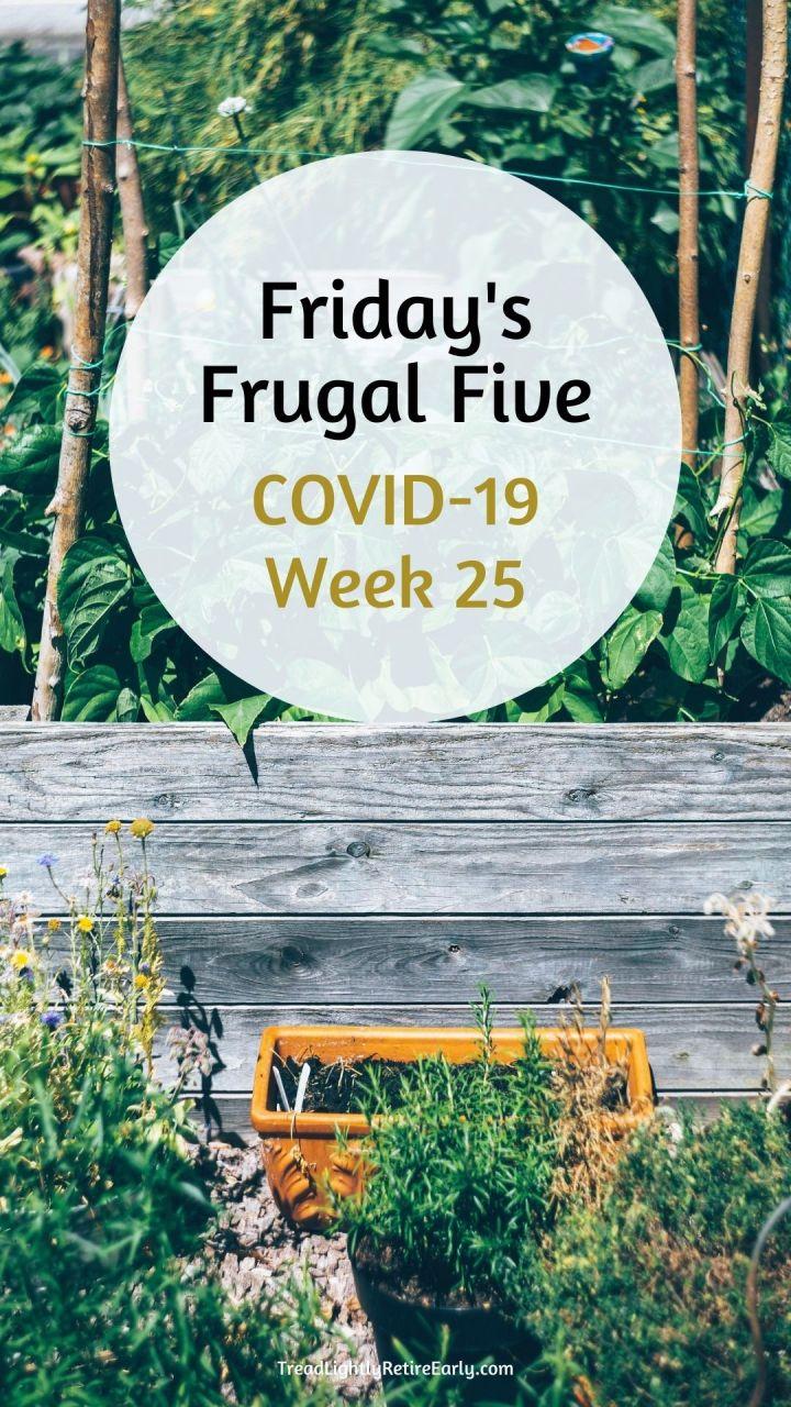 week 25 pin