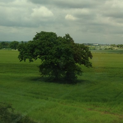 The UK in the springtime is so green and lush.  These are photos I snapped from the train.