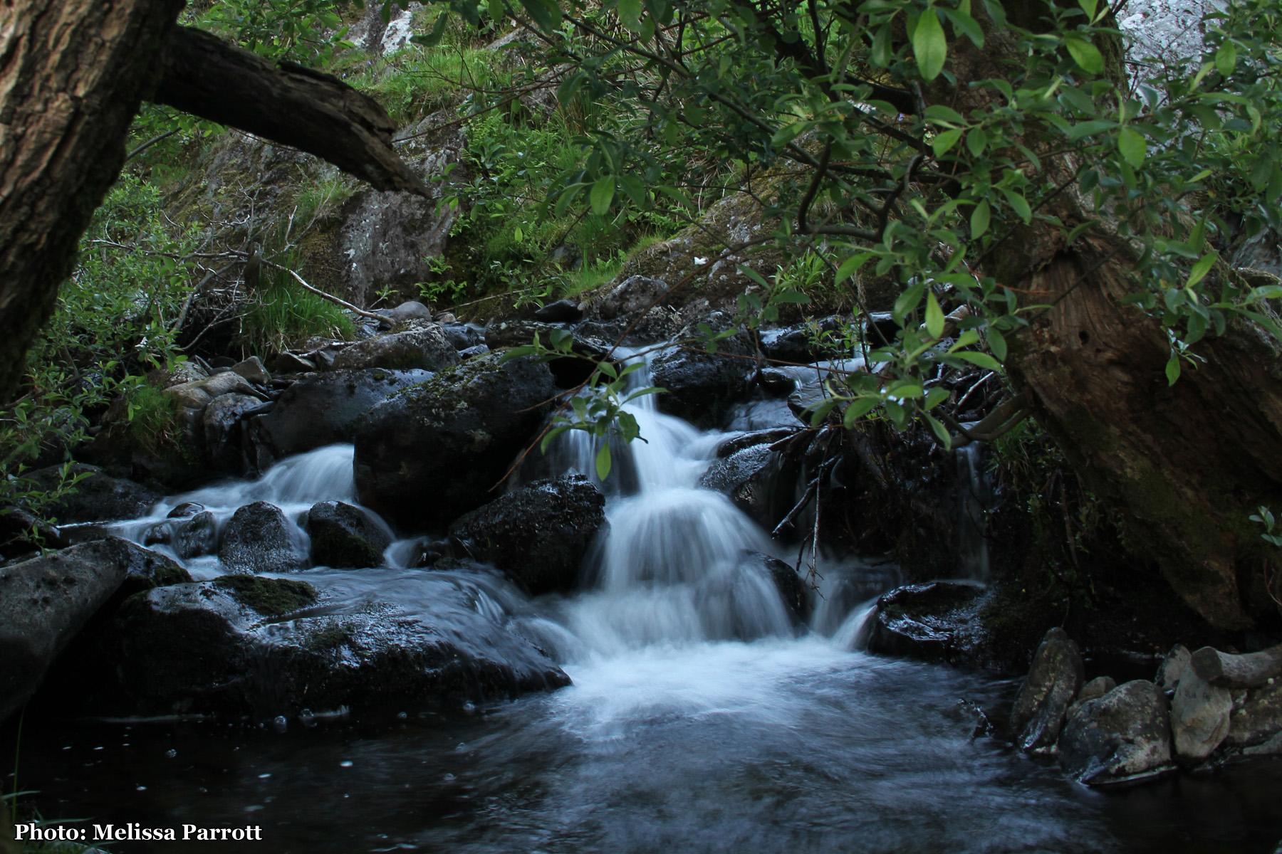 Long exposure waterfall magic, Afon Berthen.