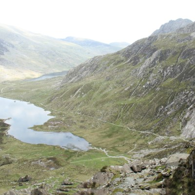 We spotted some delightful songbirds flitting from boulder to boulder and hiding in the low shrubbery, as the path wended down and evened out around the other side of Llyn Idwal.