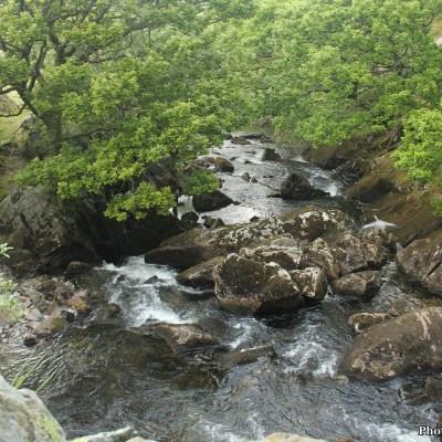 Afon Ogwen at the Tyn-Y-Maes bridge