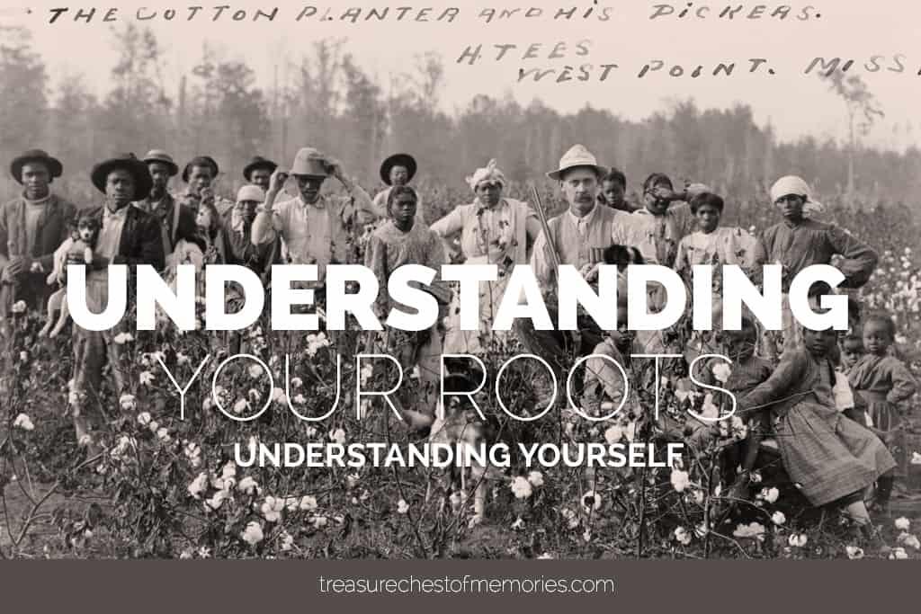 Understanding your roots graphic