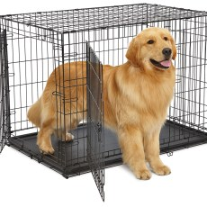 Cages Wire