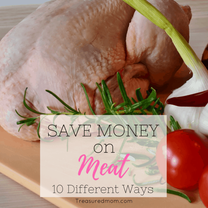 These are awesome ways to Save Money on Meat. You will drastically cut down on your grocery budget by using these ideas