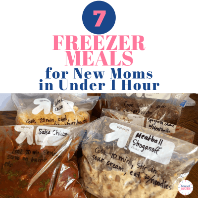 aldi postpartum freezer meals for instant pot