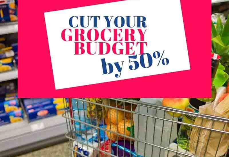 Grocery Shopping cart for save money on groceries grocery workbook