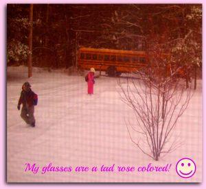 Rose Colored Glasses-sm